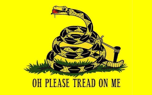 gadsden3?w=490&h=306 a pile of 23 gadsden flag memes just because rani baker digs you